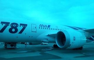 787_2.jpg